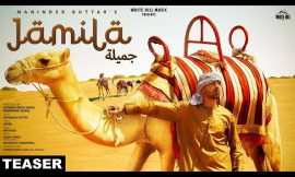 Jamila Box office collection