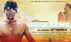 Risknamaa Box Office Collection