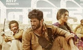 Sonchiriya Box Office Collection