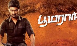 Boomerang Box Office Collection