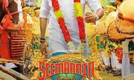 Seema Raja Box Office Collection