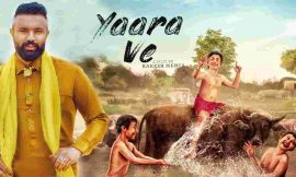 Yaara Ve Box Office Collection